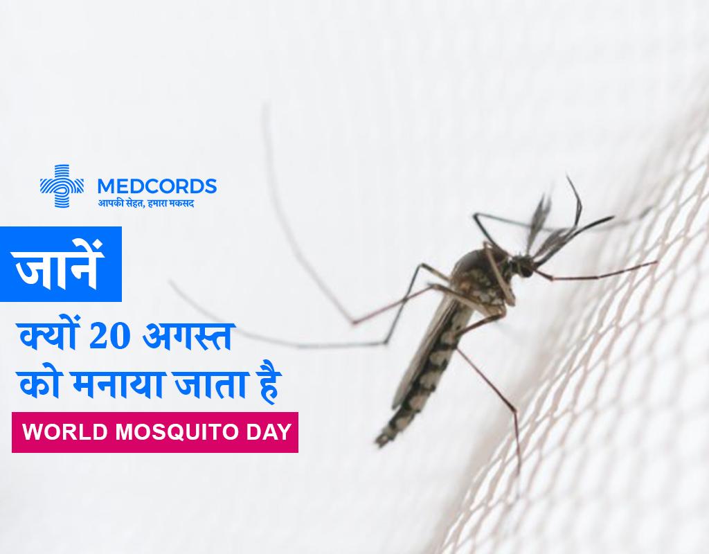 मच्छर के काटने से होने वाली 5 बीमारियां | Mosquito bite