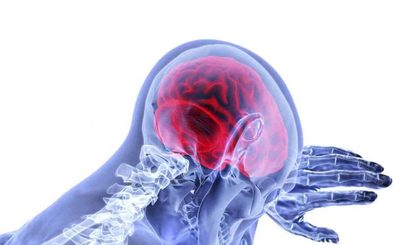 20 09 अल्जाइमर रोग का कारण क्या है जानें 3 मिनट में