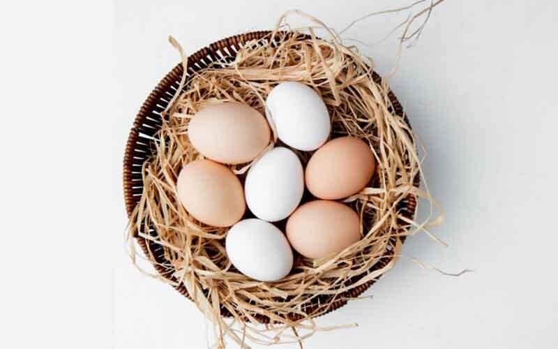 एक अंडे में मिलने वाला प्रोटीन | Daily Health Tip | 06June 2020 | AAYU App