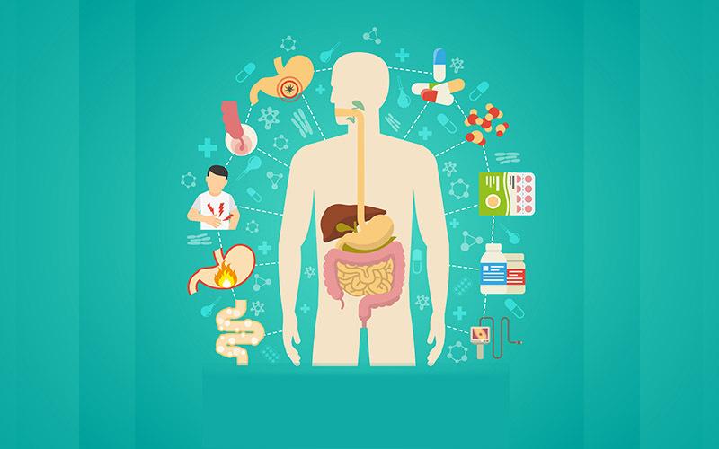पाचन क्रिया को सही रखने वाले सप्लीमेंट्स | Daily Health Tip | Aayu App
