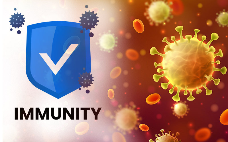 Herd Immunity Is A Large Part Of The Population Coronavirus News And Updates