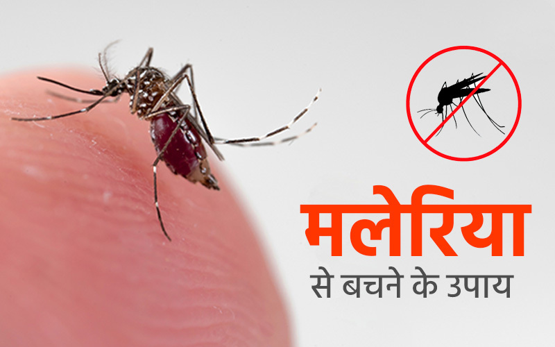 मलेरिया क्या है? कारण, लक्षण और मलेरिया से बचाव के उपाय