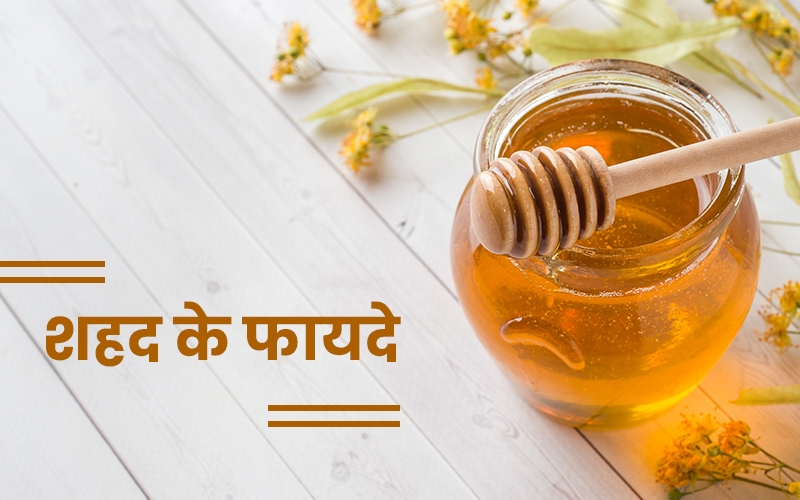 गर्म दूध के साथ शहद के फायदे | Daily Health Tip | Aayu App