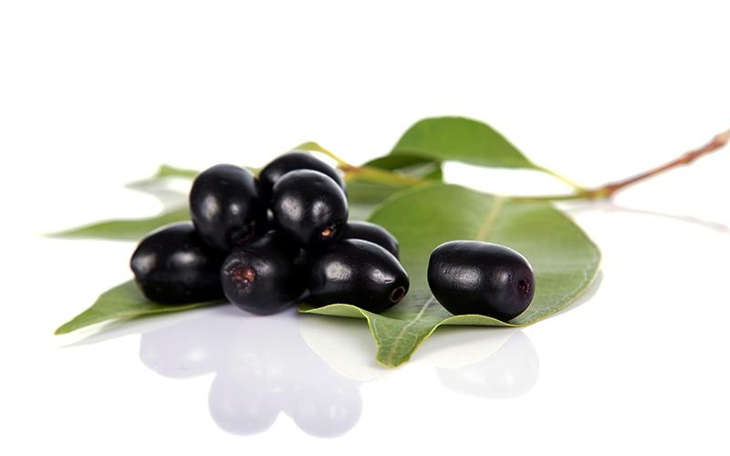 जामुन खाने के फायदे और नुकसान | Jamun Benefits and Side Effects