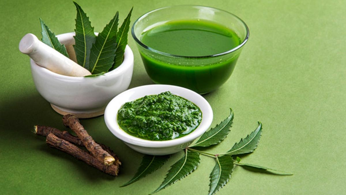 नीम के फायदे | Daily Health Tip | Aayu App