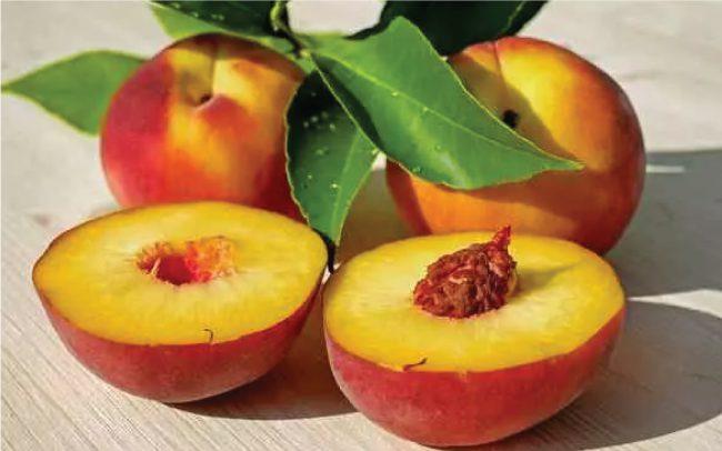 Immunity Booster fruit