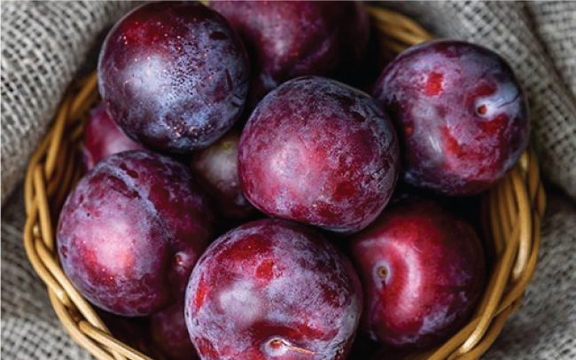 Monsoon fruits plum